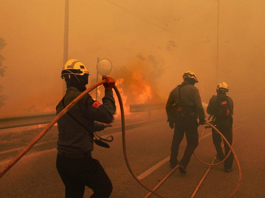 Joan Castro / AFP