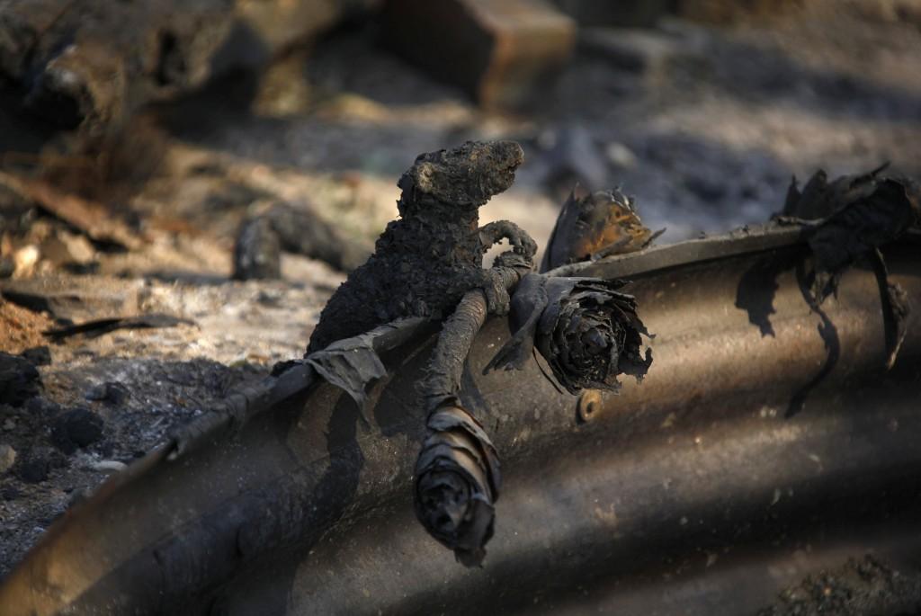 Reuters / David Gray
