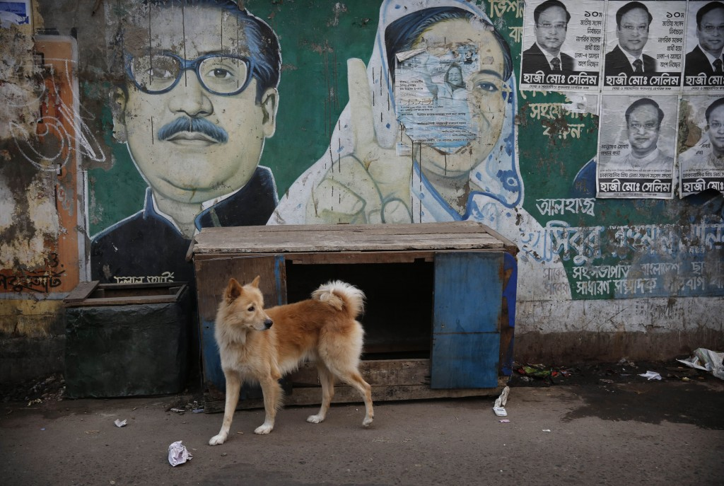 Een hond loopt over straat in Dhaka. Op de muur staan premier Hasina en haar vader afgebeeld.