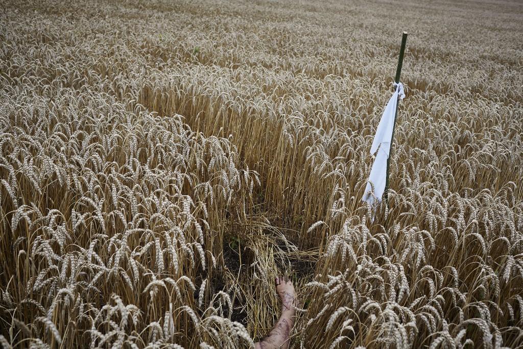 Lichamen liggen verspreid over een groot landbouwgebied. Een wit lint markeert gevonden menselijke resten.